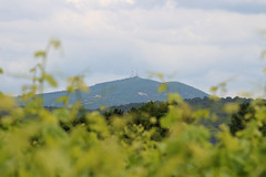Saint-Jean-de-Ceyrargues - Mont Bouquet - Photo of Saint-Jean-de-Ceyrargues