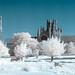 Ely cathedral IR Pano by jmbillings