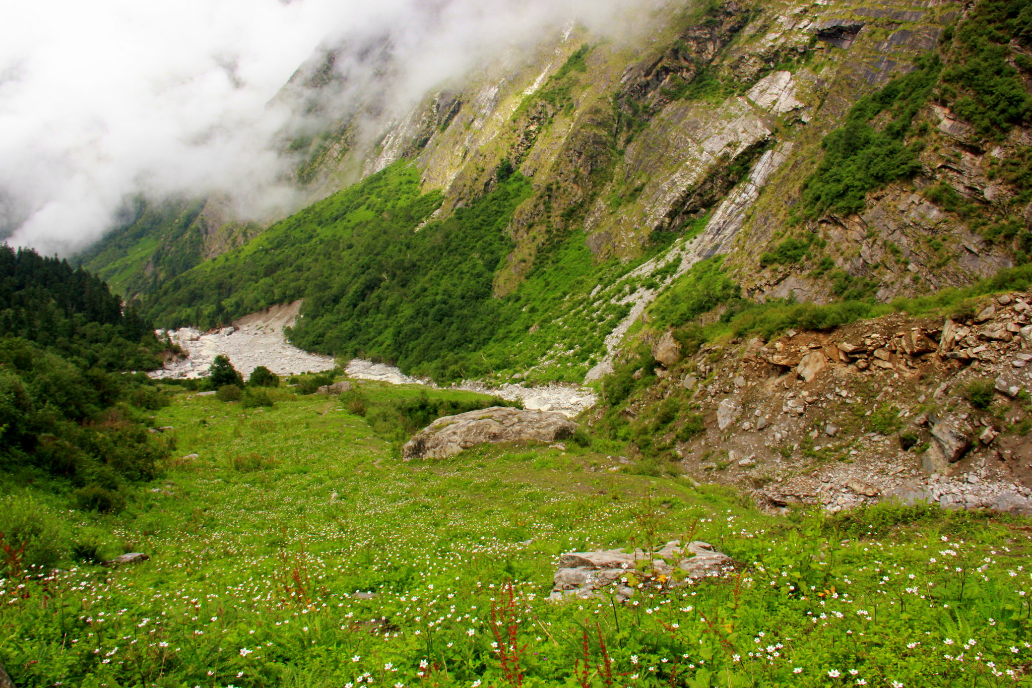 The gacier look beautiful at the valley of flowers
