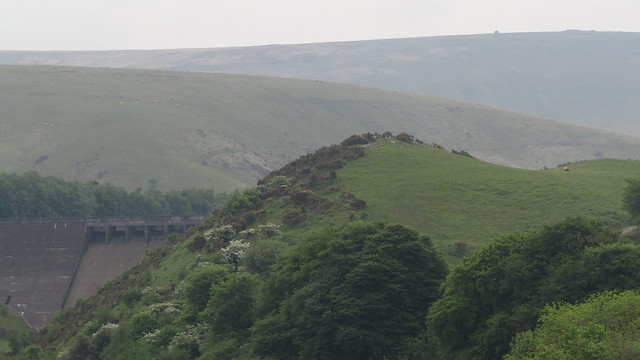 Meldon Dam and exposed rock on South Down Spur