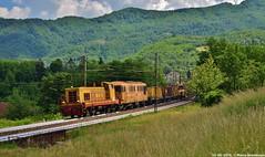 Treni Cantiere