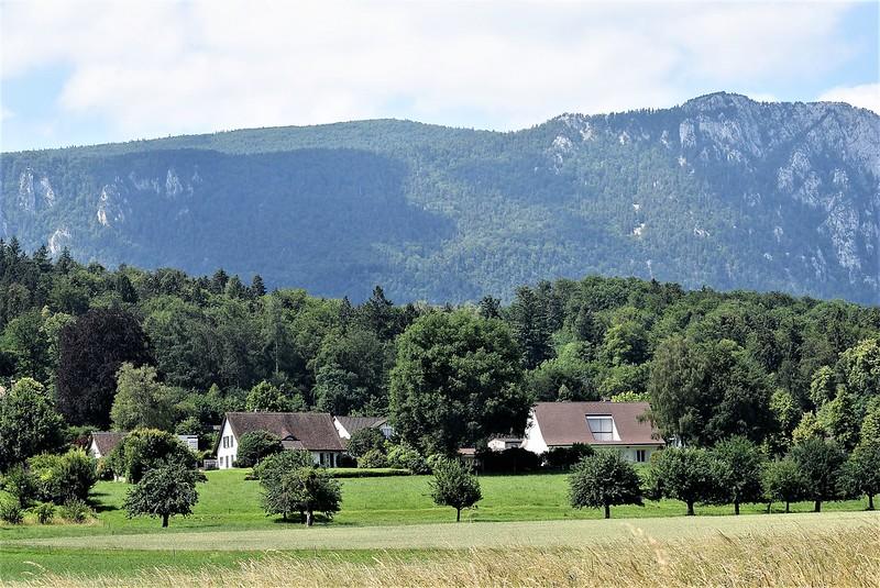 Feldbrunnen 14.06 (3)