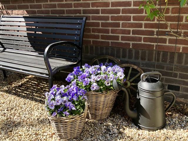 Tuinbank manden violen gieter Lungo