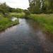 River Darent Kent