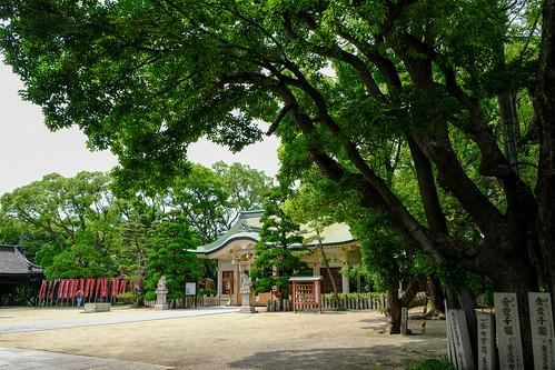 2018.06.03 大江神社