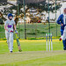 Junior Cricket Portishead