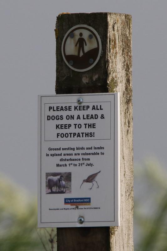 Nesting Bird sign