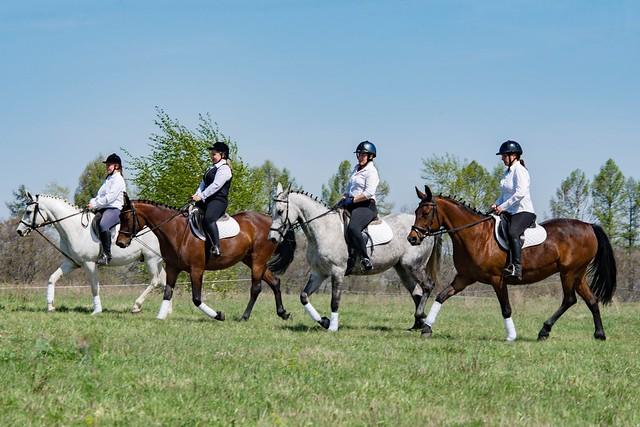 Уроки верховой езды в музее-заповеднике Тарханы, фотоиллюстрации индивидуальных занятий конным спортом 12