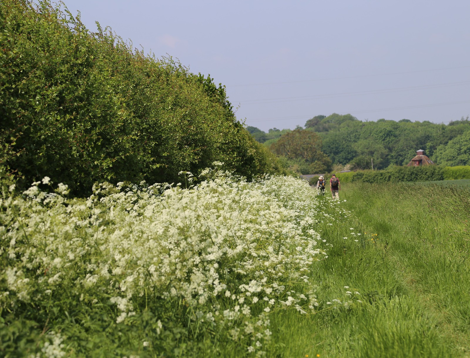 Along the edge - Otford to Eynsford Walk
