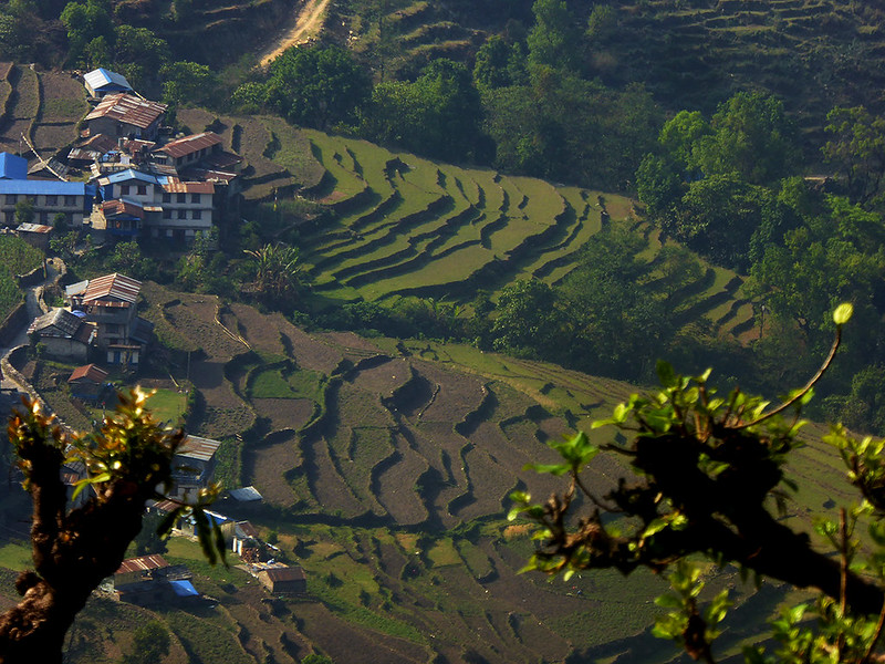 Walking along the Poon Hill trekking trail, looking down on a village and surrounding farmland.f