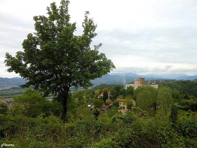 Castles of Romeo with tree, Montecchio Maggiore