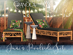 Granola. June's Poolside Set.