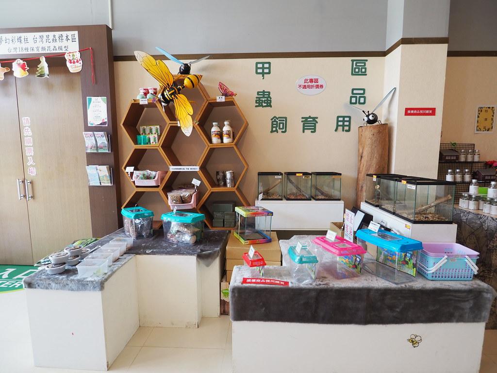 新嘉大昆蟲館 (20)