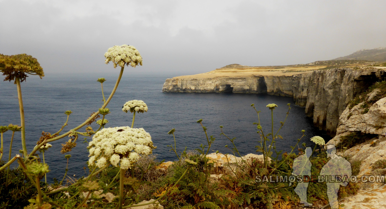 0387. Acantilados, Gozo