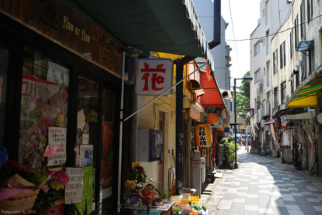 博多上川端 祇園マーケット ぎんなん通りDS7_3792_080, Nikon D800, AF-S VR Zoom-Nikkor 24-85mm f/3.5-4.5G IF-ED