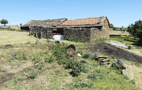 Tinados en las proximidades de la mina de Santa Teresa. Hiendelaencina (Guadalajara)