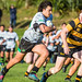 Wainui vs Wellington