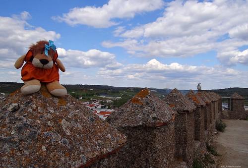 Dos palomas en el castillo de Alanís, Andalucía, España.