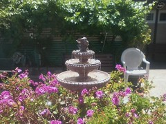 A fountain near a senior home 2