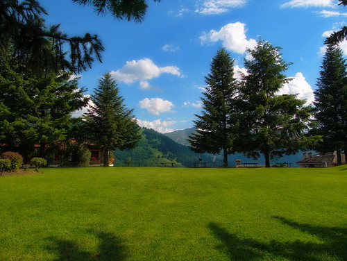 trees clouds sky grass green nature metsovo ipeiros greece landscape