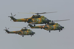 60 IAR 330 SOCAT Romania Air Force @ Campia Turzii LRCT