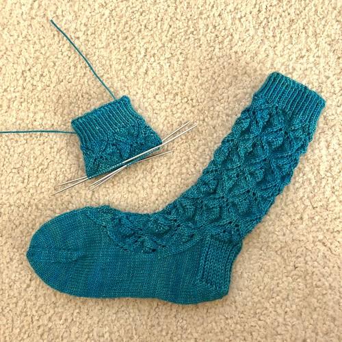 Eternal Spring socks
