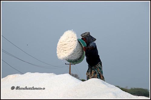 markkanam tamilnadu india saltpans salt canoneos6dmarkii tamronef28300mm