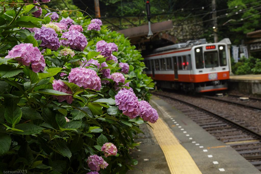 2018-06-15 塔ノ沢駅 001