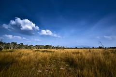 10 Best Landscapes 2016