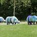 Dementia-aware hippos
