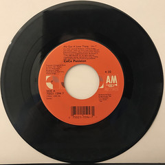 CECE PENISTON:WE GOT A LOVE THING(RECORD SIDE-A)