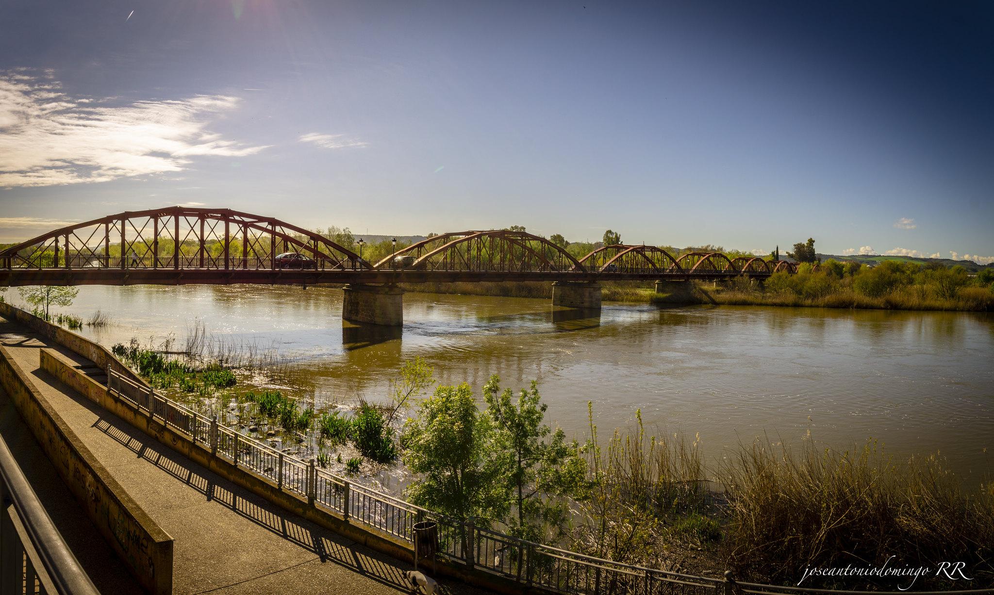 Puente de Hierro (Talavera de la Reina)