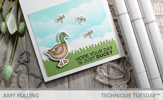 Duck Swan Goose2
