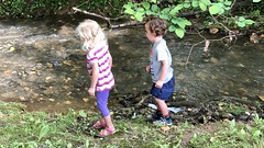 The twins throw rocks into a stream on our bike ride yesterday