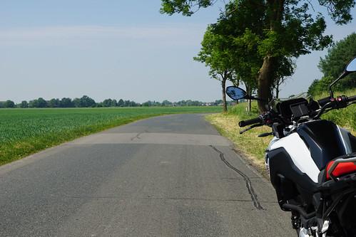 Straße nach Seester