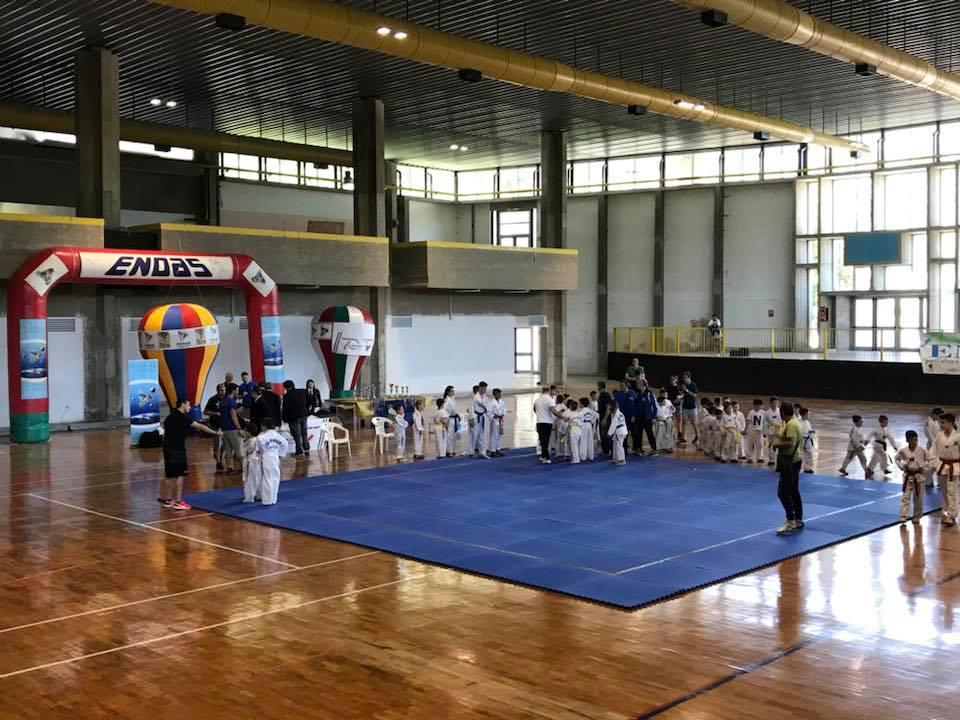 "arti marziali ""Insieme… Nello sport"" San Rufo Metasport"
