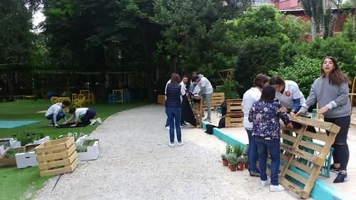 Trabajadores de Ab InBev construyendo Jardines verticales con Vegetación en Casa Corona