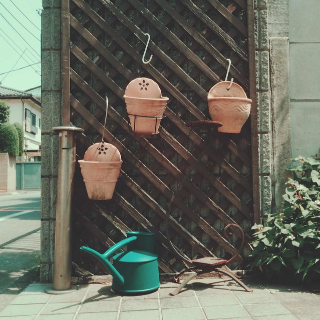 Plant pots and watering can