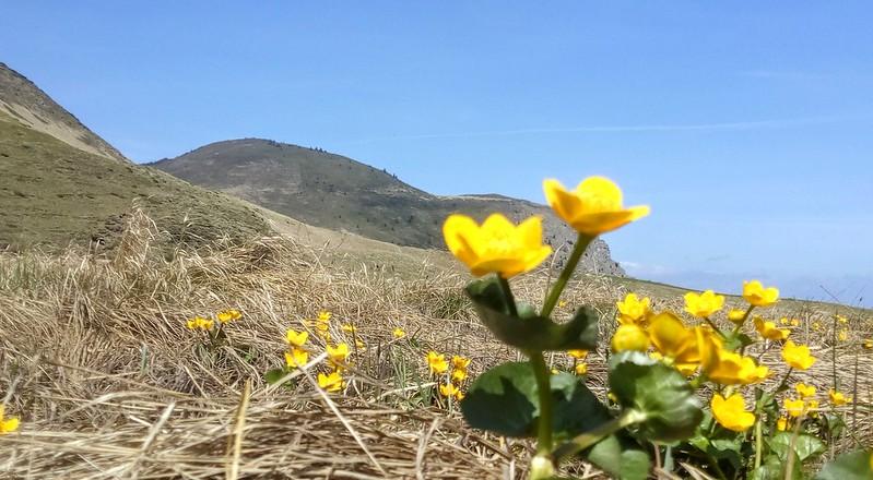 Hiking in Siriu