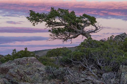 bigmesa clouds juniper sunset