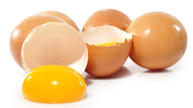 Telur banyak adalah salah satu sumber protein