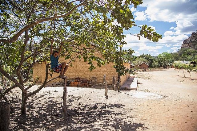 O Banco Mundial financia o projeto de regularização de terras no Piauí e ignora as ameaças que as comunidades tem sofrido com a grilagem - Créditos: Rosilene Miliotti / FASE