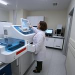 Biochemistry Laboratory 4