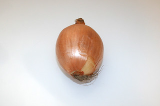 07 - Zutat Zwiebel / Ingredient onion