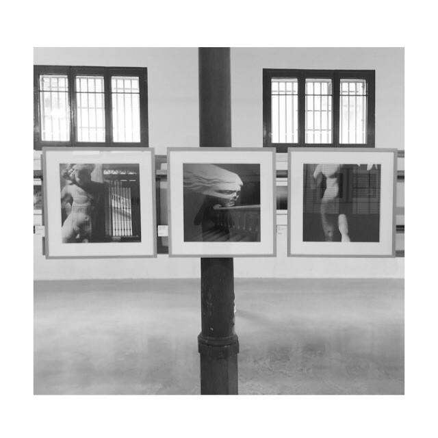 1/2 el MANT a Revela't amb fotografies de Ferran Freixa