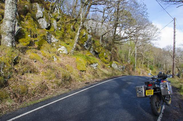 Sunart Wildcat Rally, Strontian.