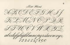 Cursive fonts from Draughtsman's Alphabets by Hermann Esser (1845–1908). Digitally enhanced from our own 5th edition of the publication.