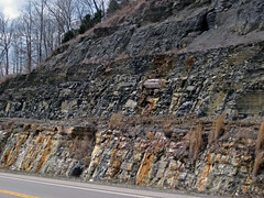 Fort Payne Formation-Chattanooga Shale-Cumberland Formation; Burkesville West Rt. 90 roadcut, Kentucky, USA) 2