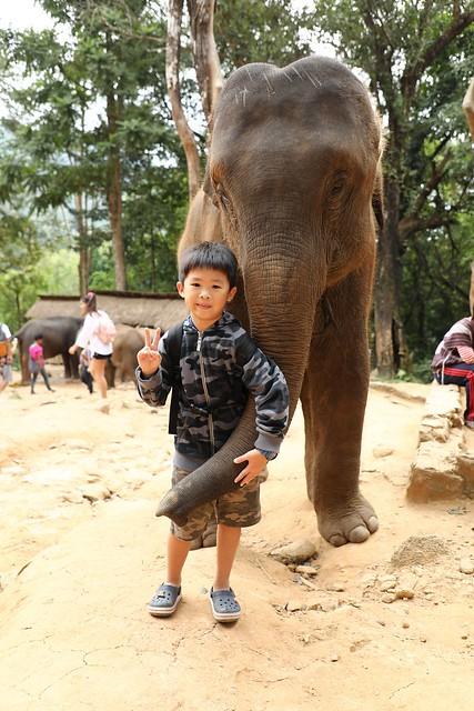 20171106_034 Elephant Bath