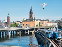Gamla Stan, City hall, Tbana trains and seagull